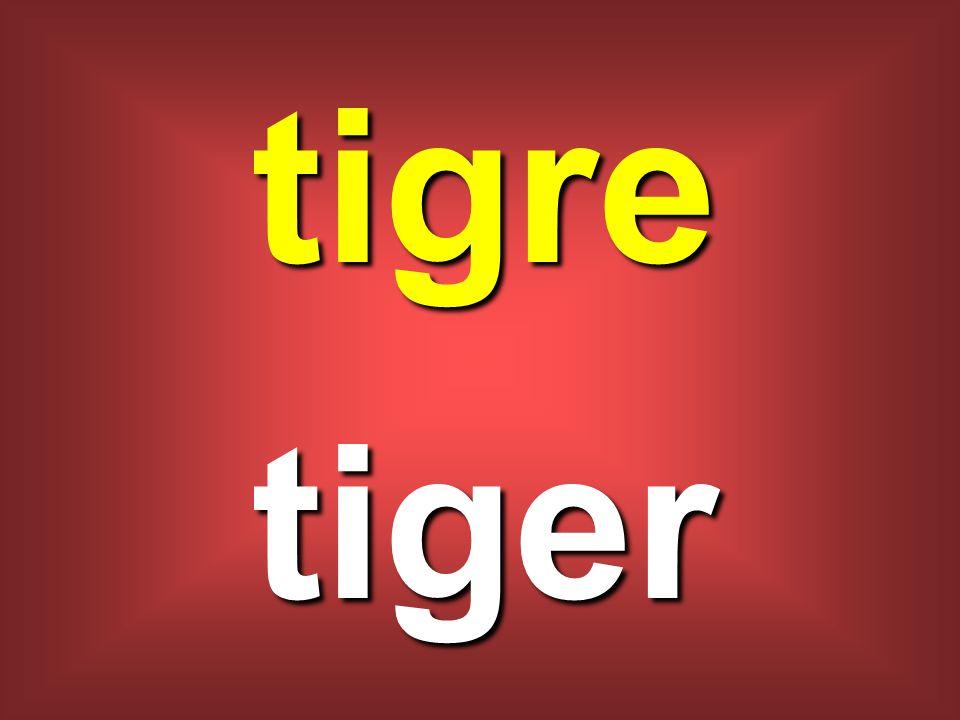 tigre tiger