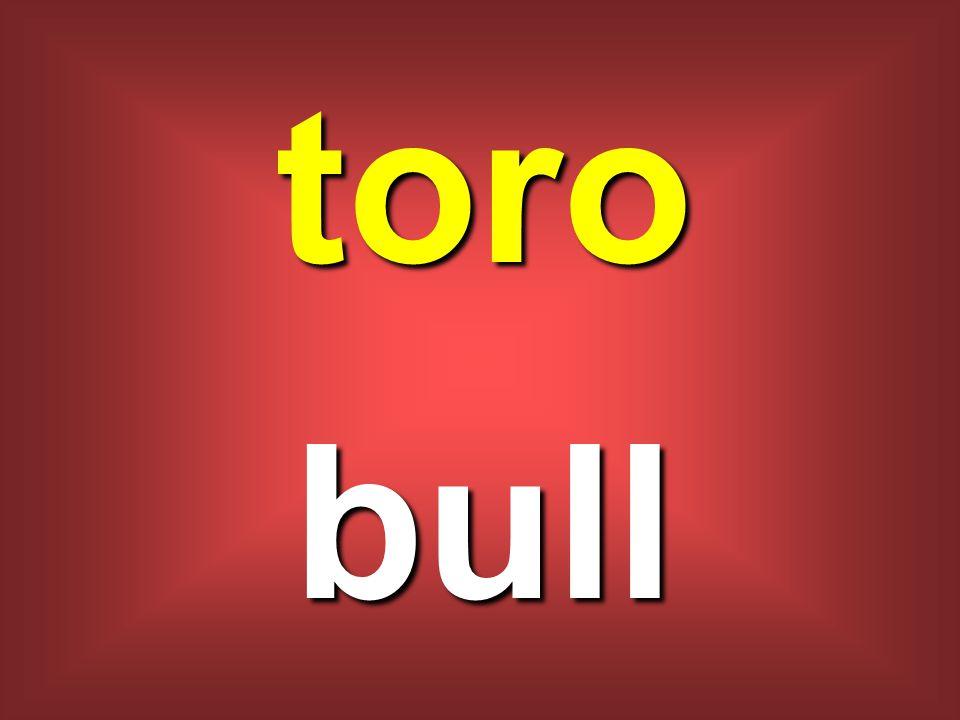 toro bull