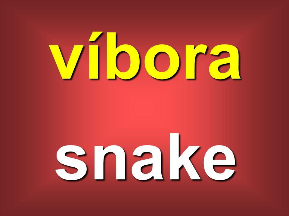 víbora snake