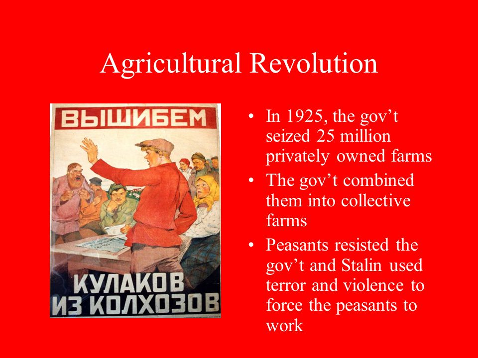 Agricultural Revolution In 1925, the gov't seized 25 million privately owned farms The gov't combined them into collective farms Peasants resisted the gov't and Stalin used terror and violence to force the peasants to work