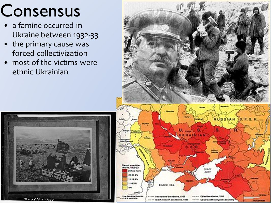 Consensus a famine occurred in Ukraine between 1932-33 the primary cause was forced collectivization most of the victims were ethnic Ukrainian
