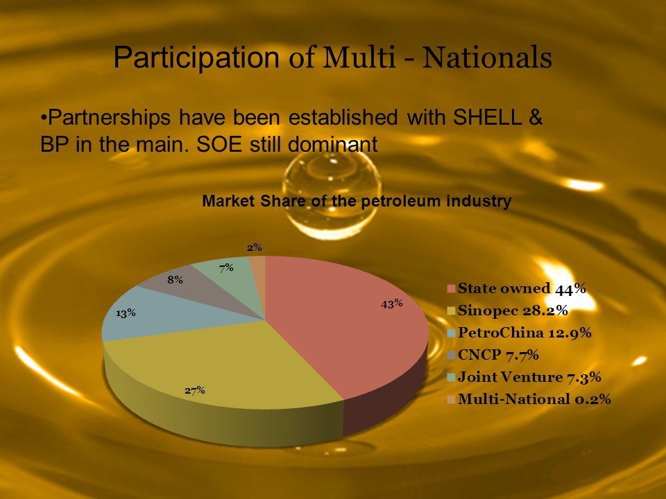 Participation of Multi - Nationals Partnerships have been established with SHELL & BP in the main.