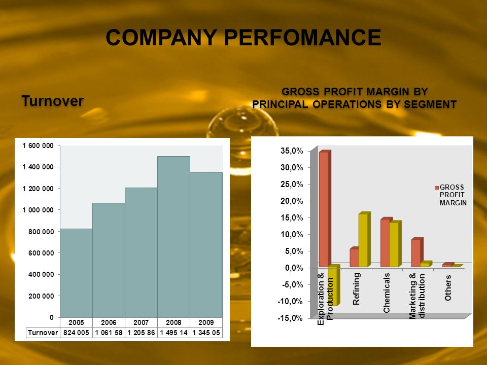 Turnover GROSS PROFIT MARGIN BY PRINCIPAL OPERATIONS BY SEGMENT COMPANY PERFOMANCE