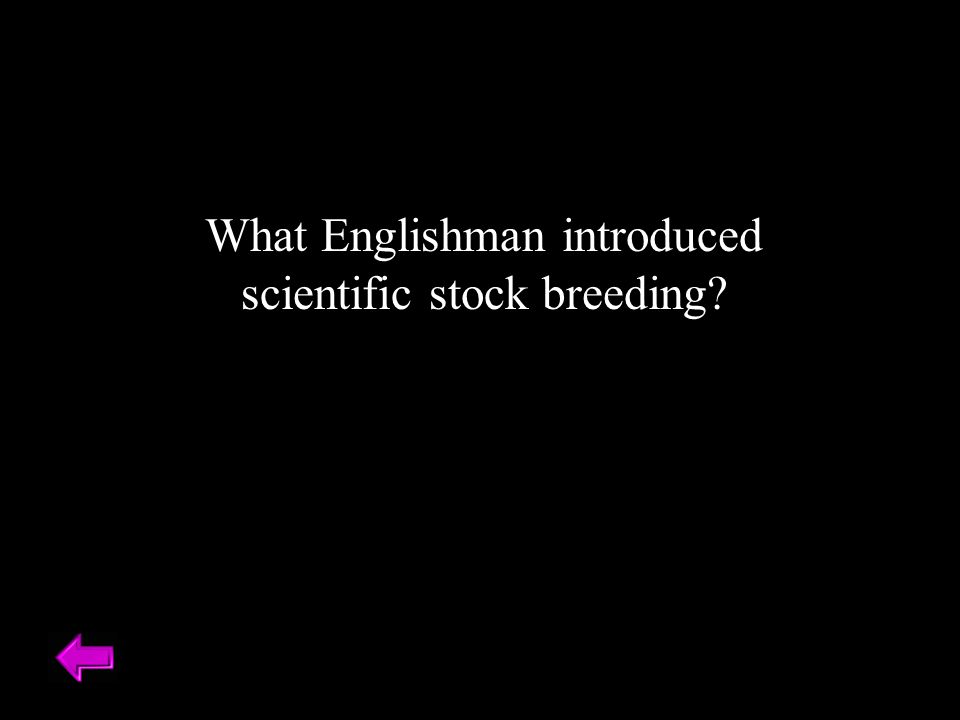 What Englishman introduced scientific stock breeding