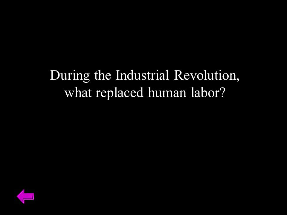 During the Industrial Revolution, what replaced human labor