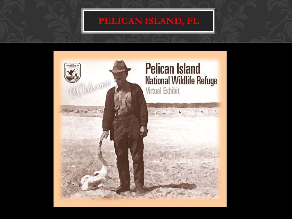 PELICAN ISLAND, FL
