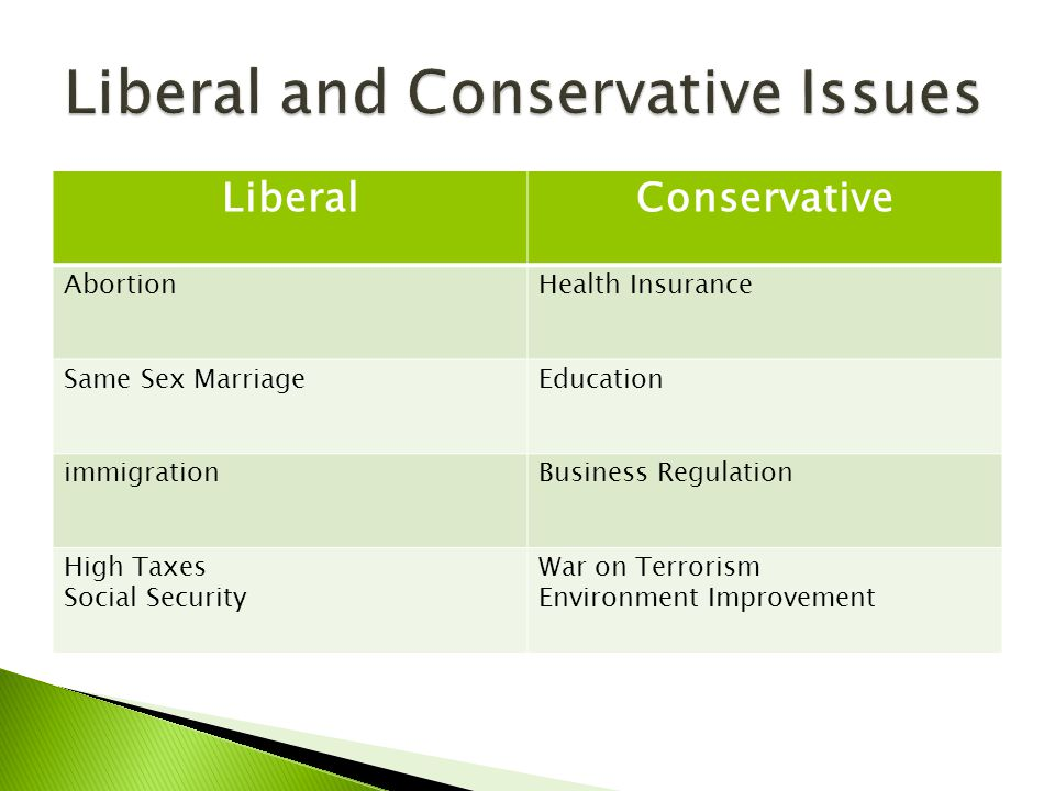 LiberalConservative AbortionHealth Insurance Same Sex MarriageEducation immigrationBusiness Regulation High Taxes Social Security War on Terrorism Environment Improvement