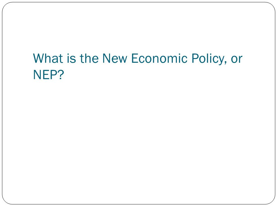 What is the New Economic Policy, or NEP?