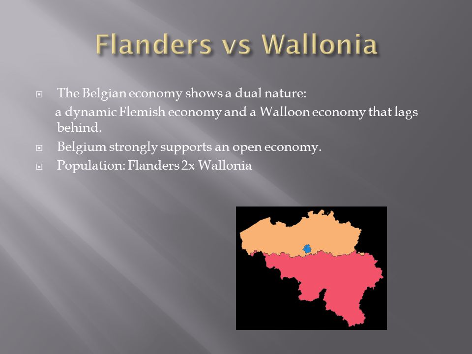  The Belgian economy shows a dual nature: a dynamic Flemish economy and a Walloon economy that lags behind.