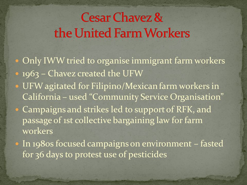 Only IWW tried to organise immigrant farm workers 1963 – Chavez created the UFW UFW agitated for Filipino/Mexican farm workers in California – used Community Service Organisation Campaigns and strikes led to support of RFK, and passage of 1st collective bargaining law for farm workers In 1980s focused campaigns on environment – fasted for 36 days to protest use of pesticides