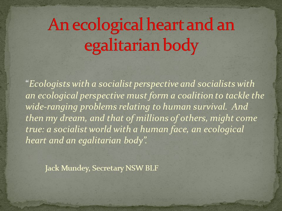 Ecologists with a socialist perspective and socialists with an ecological perspective must form a coalition to tackle the wide-ranging problems relating to human survival.