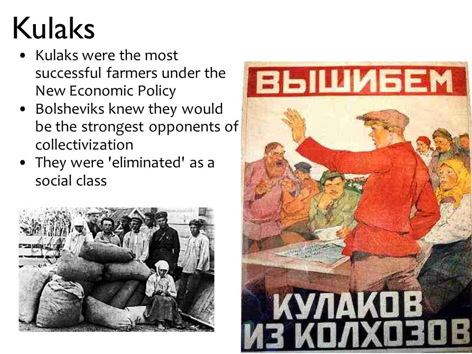 Kulaks Kulaks were the most successful farmers under the New Economic Policy Bolsheviks knew they would be the strongest opponents of collectivization They were eliminated as a social class