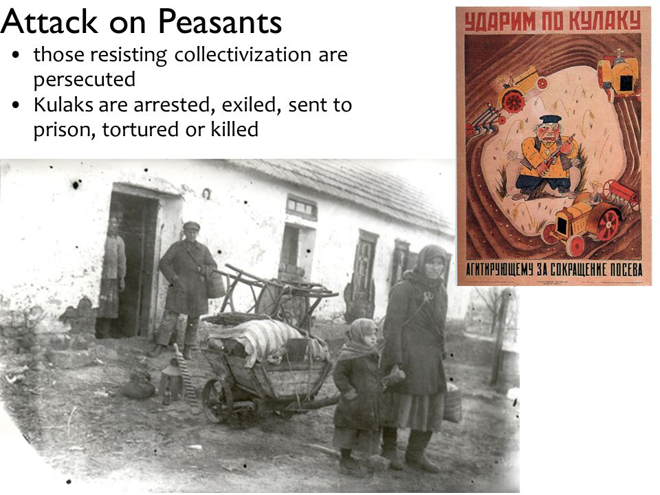 Attack on Peasants those resisting collectivization are persecuted Kulaks are arrested, exiled, sent to prison, tortured or killed