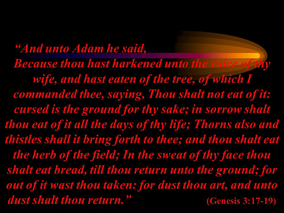 And unto Adam he said, Because thou hast harkened unto the voice of thy wife, and hast eaten of the tree, of which I commanded thee, saying, Thou shalt not eat of it: cursed is the ground for thy sake; in sorrow shalt thou eat of it all the days of thy life; Thorns also and thistles shall it bring forth to thee; and thou shalt eat the herb of the field; In the sweat of thy face thou shalt eat bread, till thou return unto the ground; for out of it wast thou taken: for dust thou art, and unto dust shalt thou return. (Genesis 3:17-19)