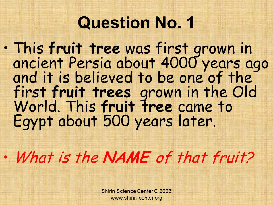 Answers to Yalda History & Culture Trivia