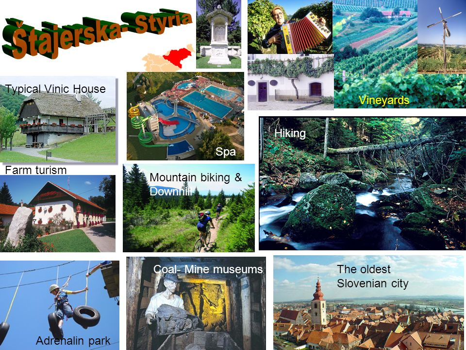 Vineyards Typical Vinic House Adrenalin park Spa Mountain biking & Downhill Hiking Coal- Mine museumsThe oldest Slovenian city Farm turism