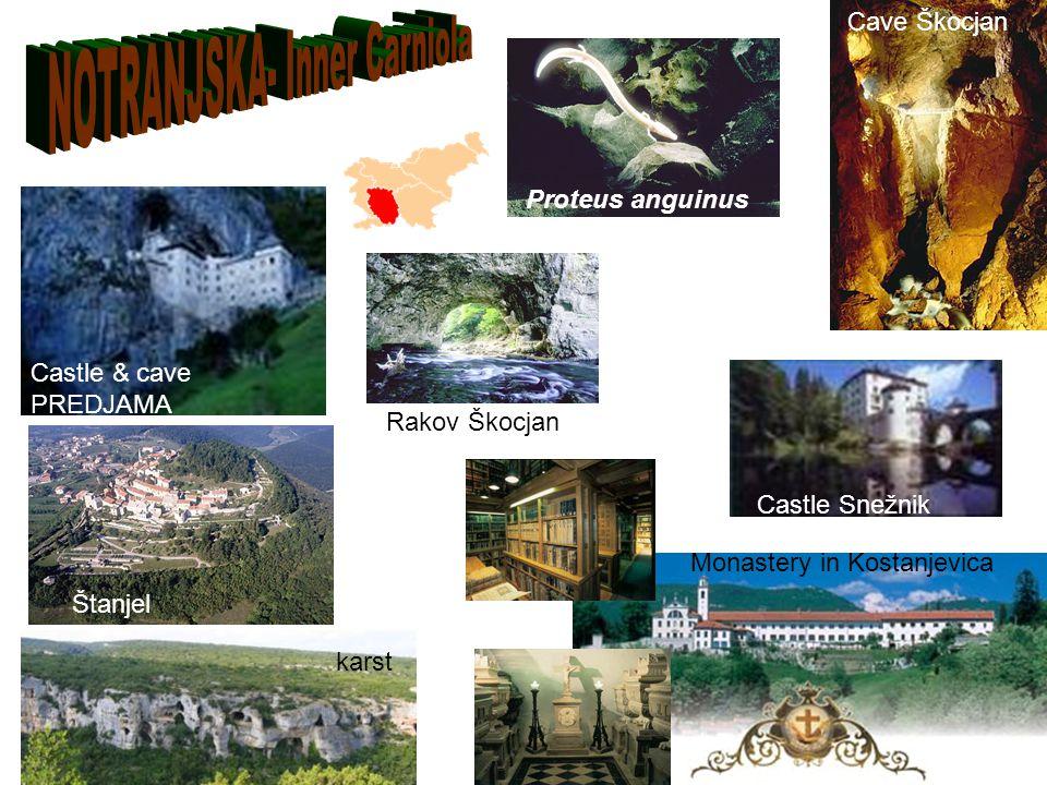 karst Monastery in Kostanjevica Castle Snežnik Štanjel Castle & cave PREDJAMA Rakov Škocjan Proteus anguinus Cave Škocjan