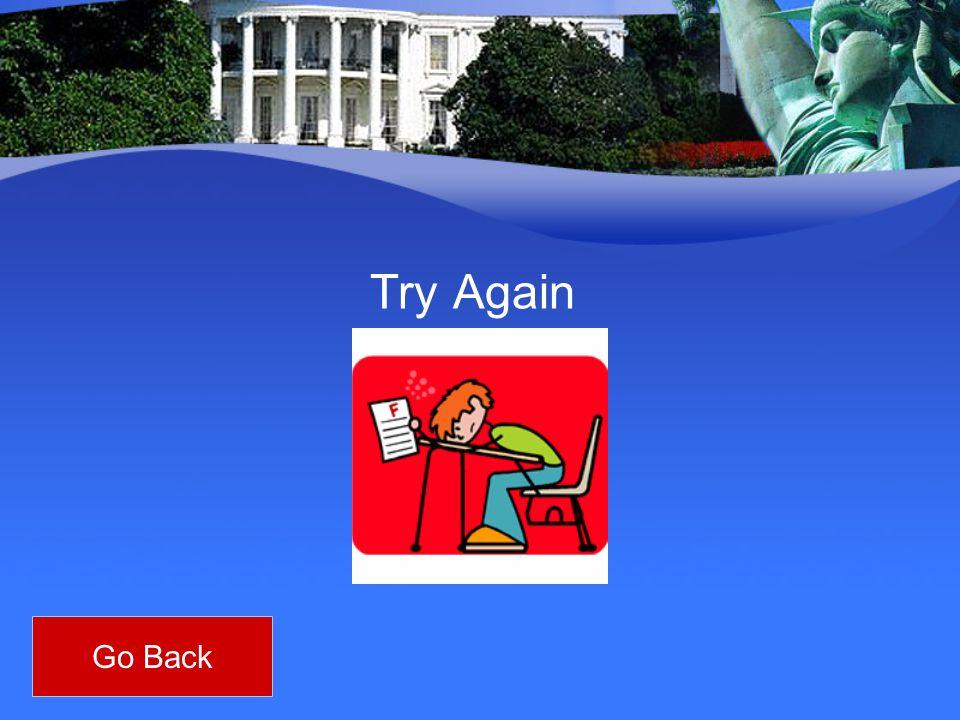 Try Again Go Back