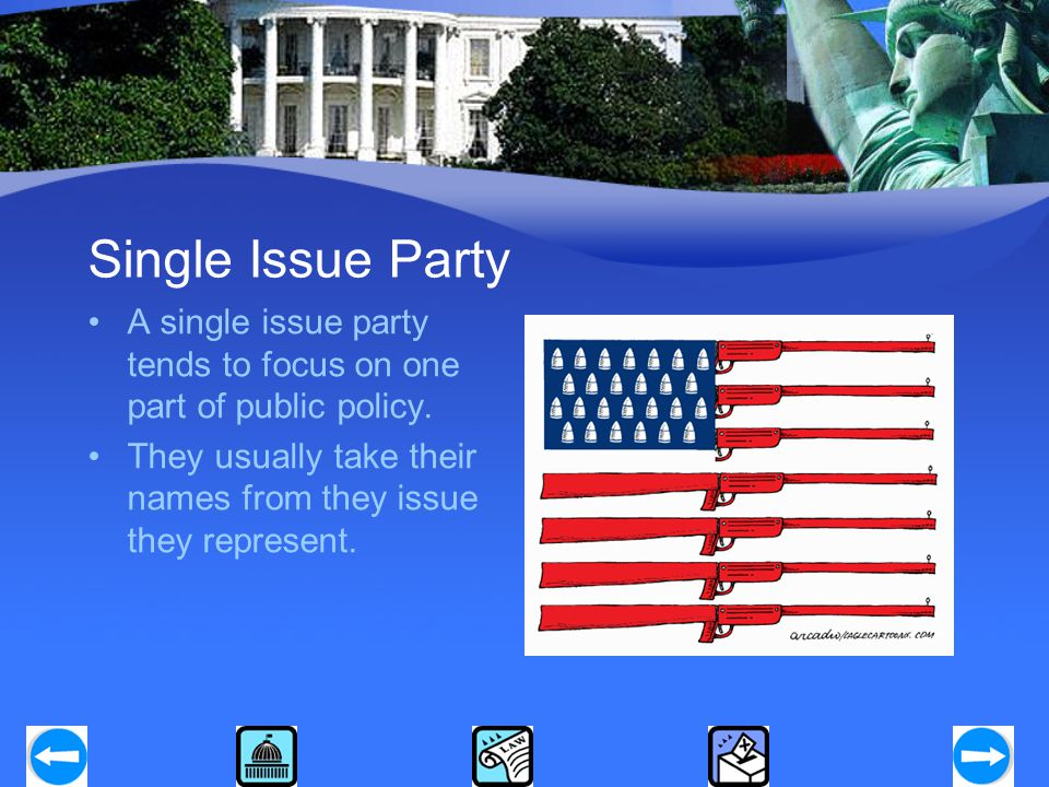 Single Issue Party A single issue party tends to focus on one part of public policy. They usually take their names from they issue they represent.