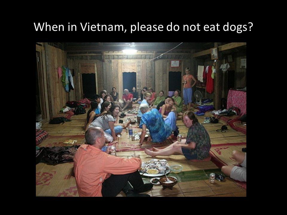 When in Vietnam, please do not eat dogs?