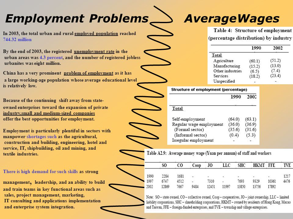Employment Problems AverageWages In 2003, the total urban and rural employed population reached 744.32 million By the end of 2003, the registered unem