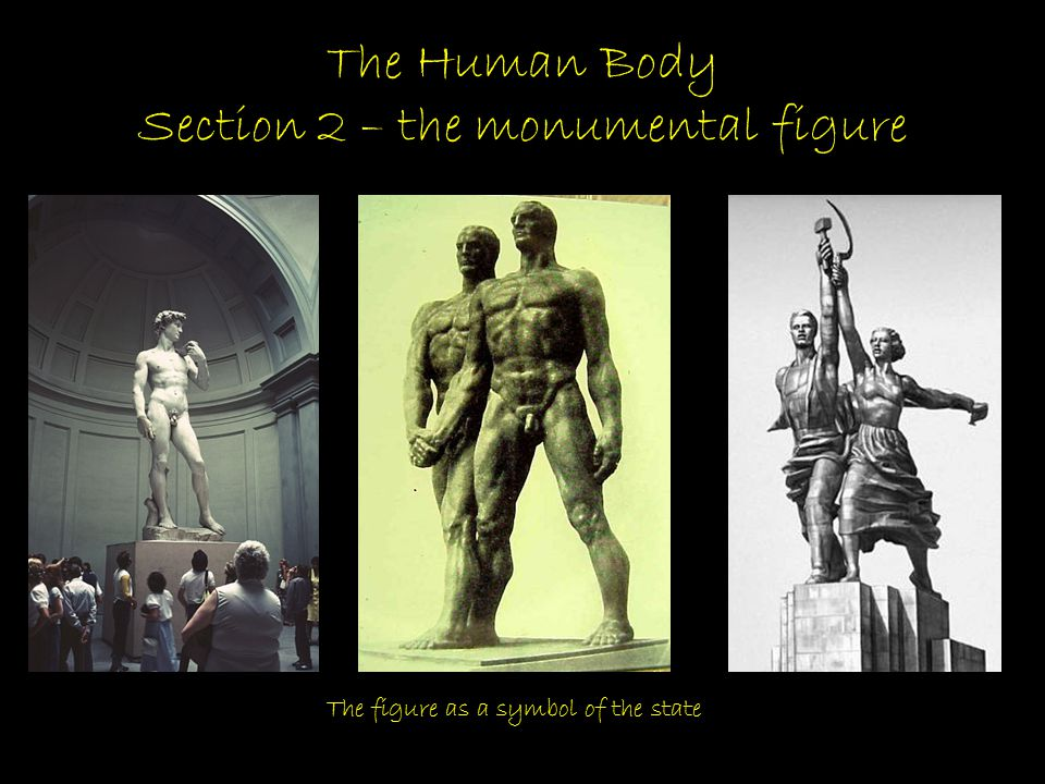 The Human Body Section 2 – the monumental figure The figure as a symbol of the state