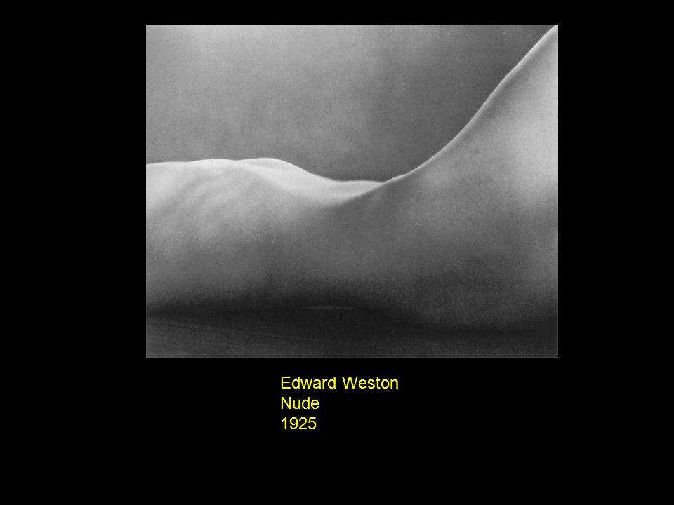 Edward Weston Nude 1936