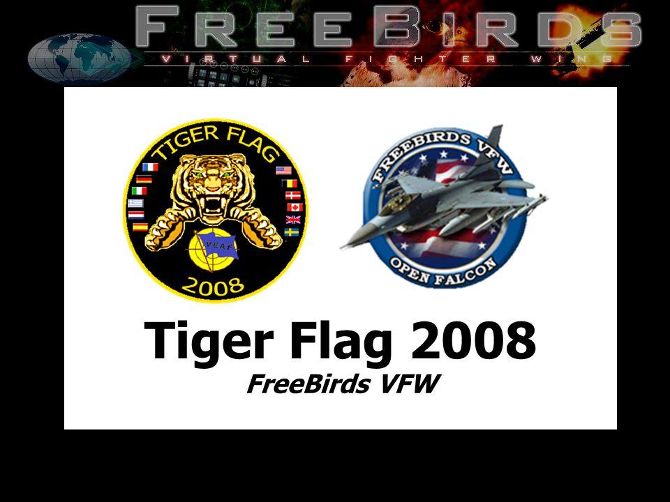 22 FreeBirds VFW Restricted Sunday 29/06/08 Air Annex - Day3