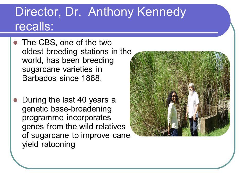 Director, Dr.