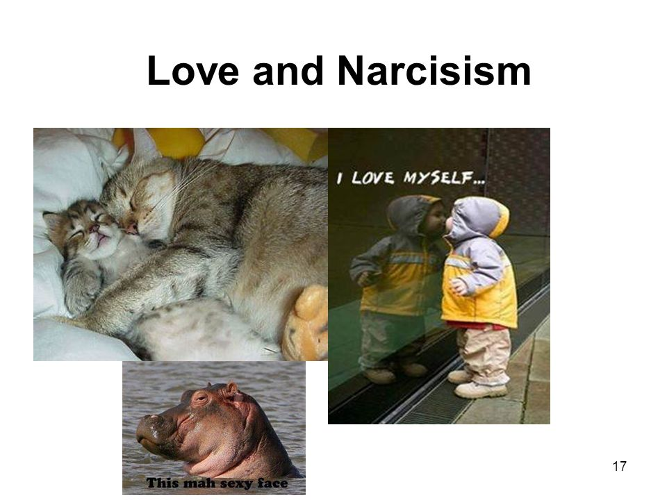 Love and Narcisism 17