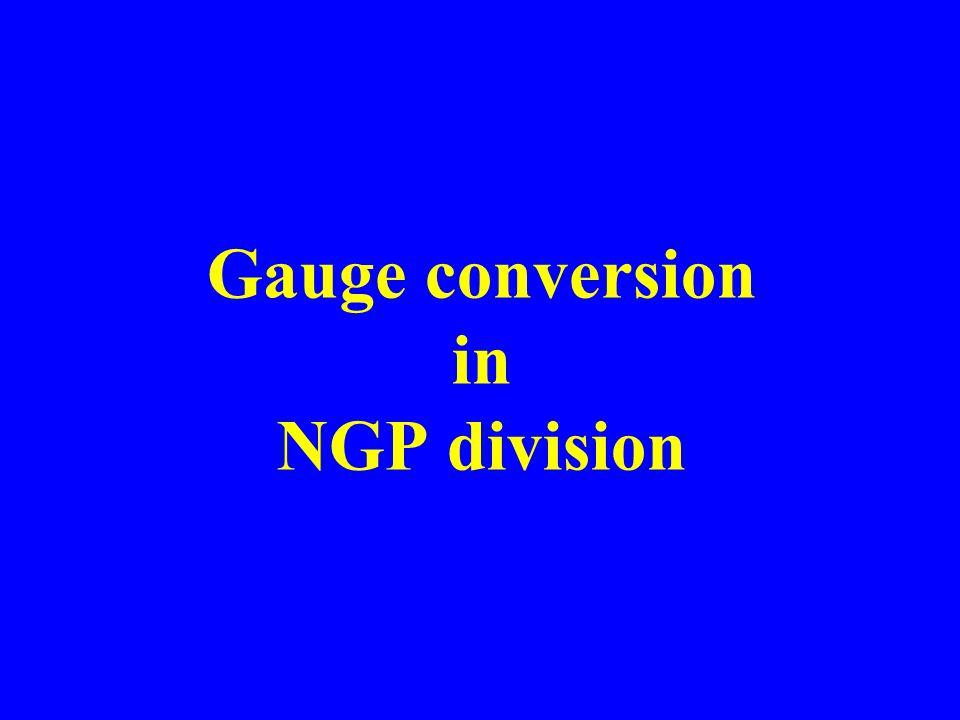 Gauge conversion in NGP division