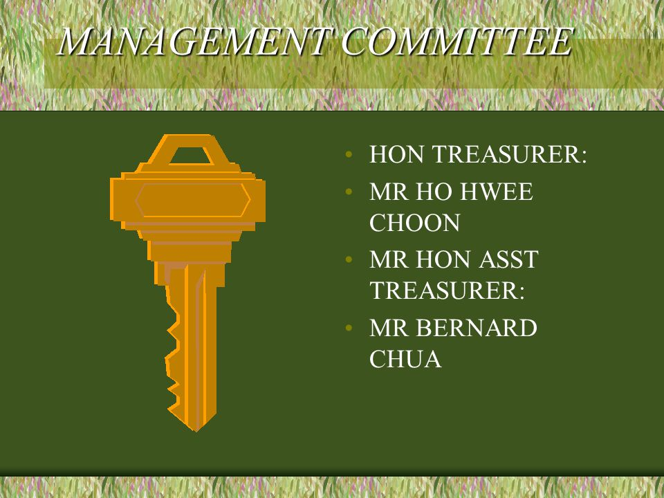 MANAGEMENT COMMITTEE HON TREASURER: MR HO HWEE CHOON MR HON ASST TREASURER: MR BERNARD CHUA