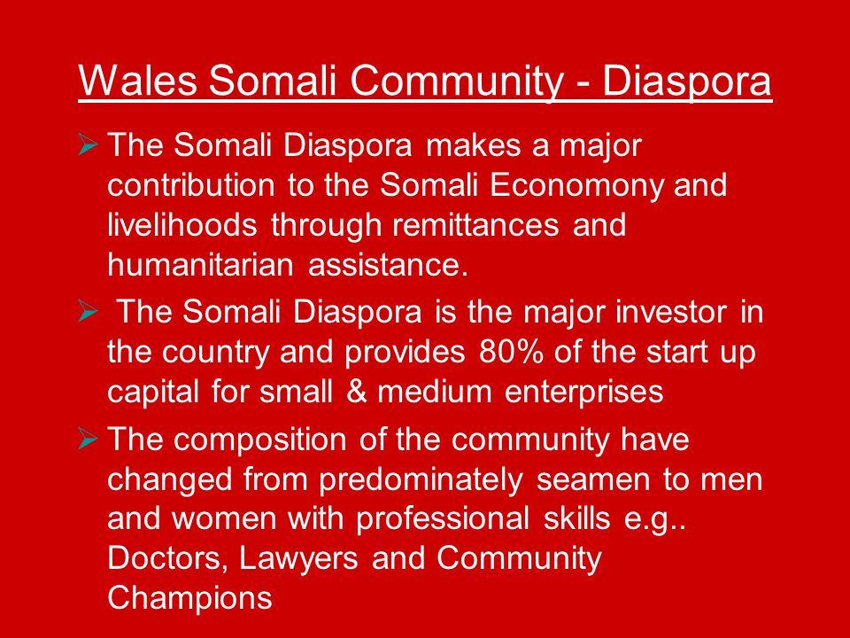 Wales Somali Community - Diaspora  The Somali Diaspora makes a major contribution to the Somali Economony and livelihoods through remittances and humanitarian assistance.