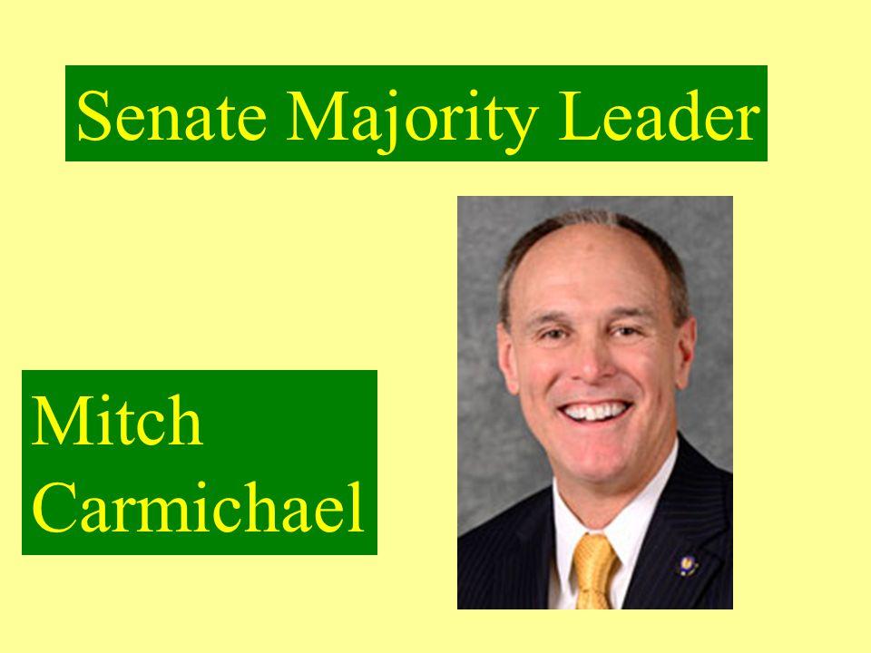Senate President Pro Tempore Mitch Carmichael