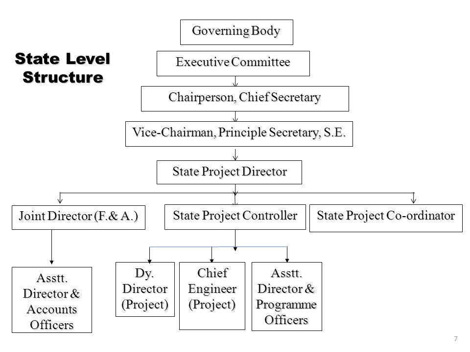 State Level Structure 7 Joint Director (F.& A.) State Project Controller State Project Co-ordinator State Project Director Dy.