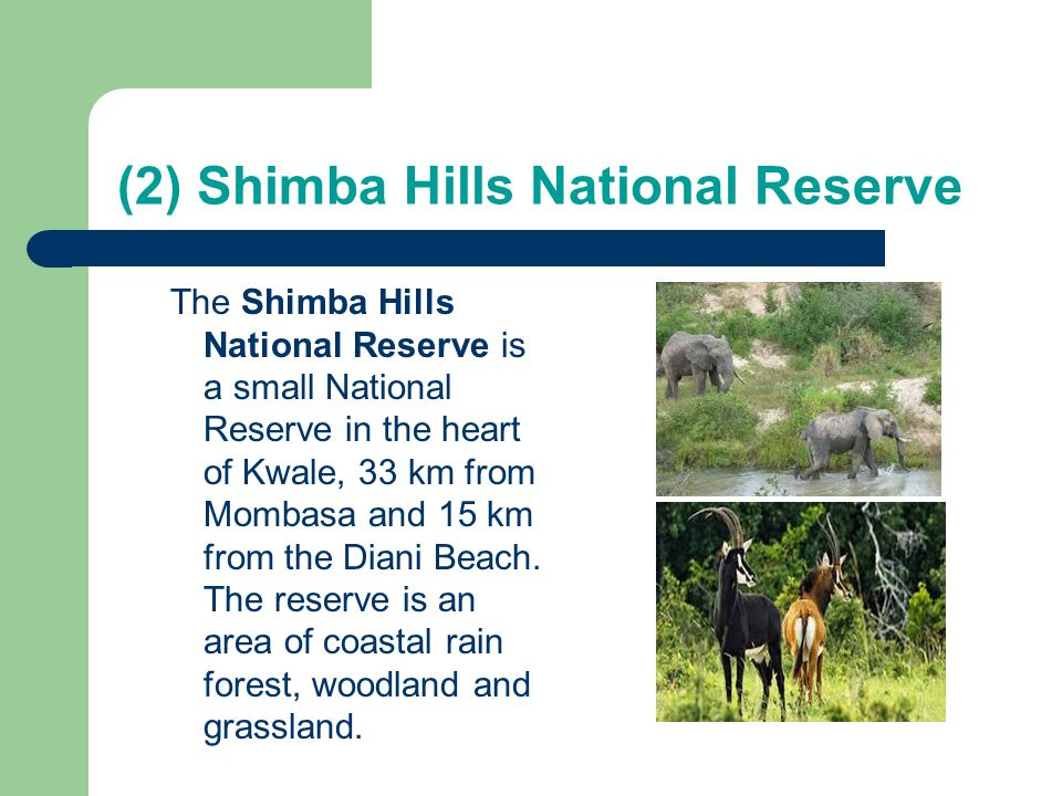 (2) Shimba Hills National Reserve The Shimba Hills National Reserve is a small National Reserve in the heart of Kwale, 33 km from Mombasa and 15 km fr