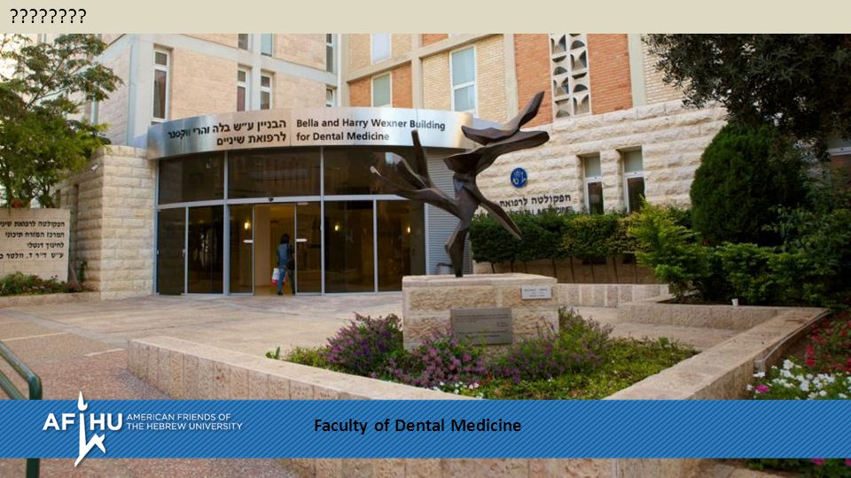 Faculty of Dental Medicine