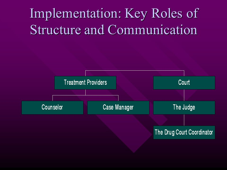 Implementation: Key Roles of Structure and Communication