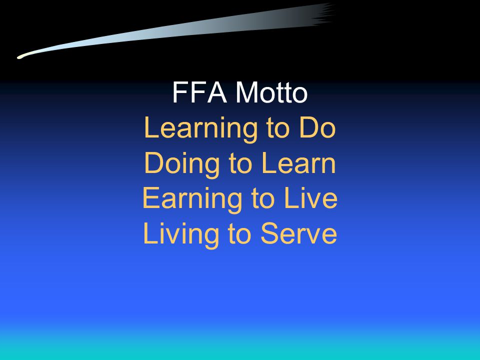 """Motto Short expression that suggests a guiding rule of conduct Examples: """"Look before you leap"""" """"The early bird catches the worm"""" """"It's better to regr"""