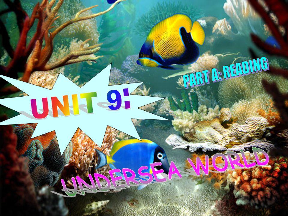 1.Gulf /g ʌ lf/ (n): Vịnh 2.Submarine / ˈ s ʌ bməri:n/ (n): Tàu ngầm 3.Starfish / ˈ st ɑː.f ɪʃ / (n): Sao biển 4.Shark / ʃɑː k/ (n): Cá mập 5.Investigate / ɪ n ˈ ves.t ɪ.ge ɪ t/ (n): Khảo sát, điều tra 6.Biodiversity / ˌ ba ɪ ə ʊ da ɪˈ v ɜ :səti / (n) :Sự đa dạng sinh học 7.Sample / ˈ s ɑː m.pl/ (n): Mẫu vật 8.Oversized / ˈ ə ʊ vəsa ɪ zd/ (adj): Quá cỡ 9.Tiny / ˈ ta ɪ.ni/ (adj): Tí hon 10.Challenge / ˈ t ʃ æl.