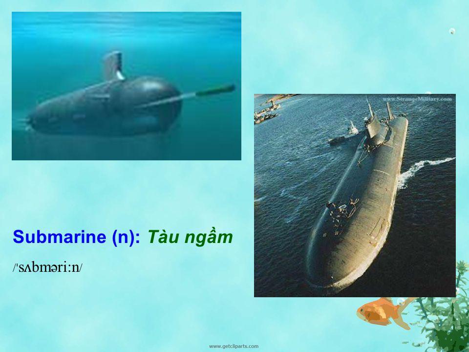 Starfish / ˈ st ɑː.f ɪʃ / (n): Sao biển Shark / ʃɑː k/ (n): Cá mập