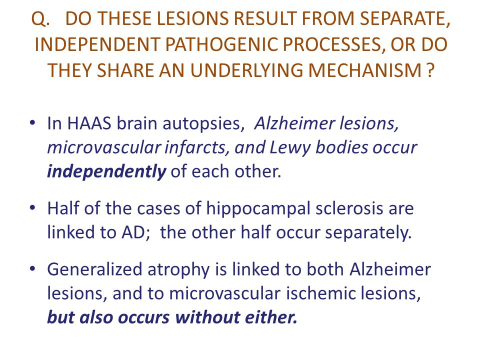 Q. DO THESE LESIONS RESULT FROM SEPARATE, INDEPENDENT PATHOGENIC PROCESSES, OR DO THEY SHARE AN UNDERLYING MECHANISM ? In HAAS brain autopsies, Alzhei