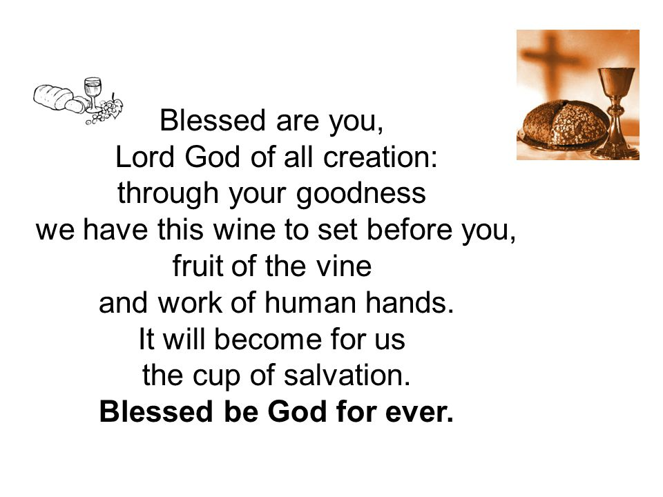 Blessed are you, Lord God of all creation: through your goodness we have this wine to set before you, fruit of the vine and work of human hands.