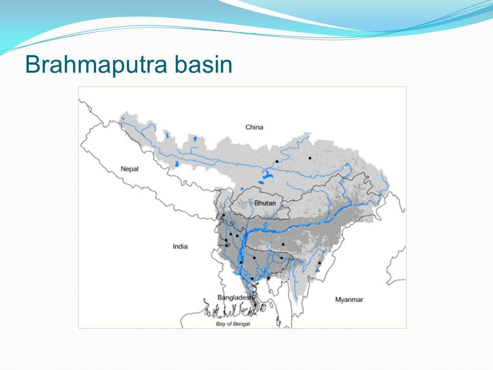 Brahmaputra basin