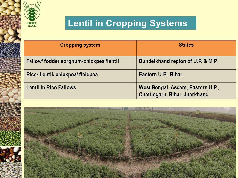 Cropping systemStates Fallow/ fodder sorghum-chickpea /lentilBundelkhand region of U.P. & M.P. Rice- Lentil/ chickpea/ fieldpeaEastern U.P., Bihar, Le
