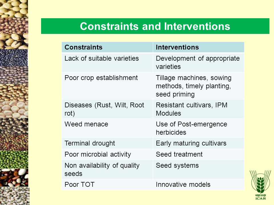 Constraints and Interventions ConstraintsInterventions Lack of suitable varietiesDevelopment of appropriate varieties Poor crop establishmentTillage machines, sowing methods, timely planting, seed priming Diseases (Rust, Wilt, Root rot) Resistant cultivars, IPM Modules Weed menaceUse of Post-emergence herbicides Terminal droughtEarly maturing cultivars Poor microbial activitySeed treatment Non availability of quality seeds Seed systems Poor TOTInnovative models