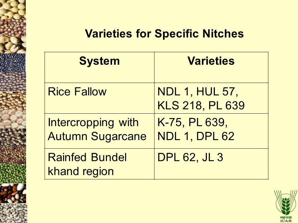 SystemVarieties Rice FallowNDL 1, HUL 57, KLS 218, PL 639 Intercropping with Autumn Sugarcane K-75, PL 639, NDL 1, DPL 62 Rainfed Bundel khand region