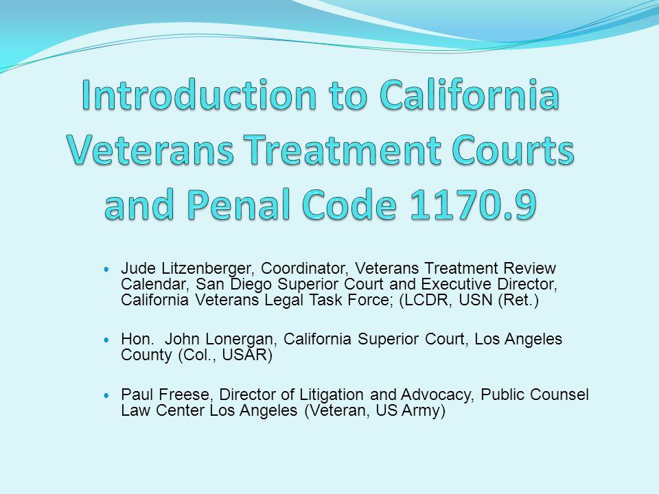 Jude Litzenberger, Coordinator, Veterans Treatment Review Calendar, San Diego Superior Court and Executive Director, California Veterans Legal Task Force; (LCDR, USN (Ret.) Hon.