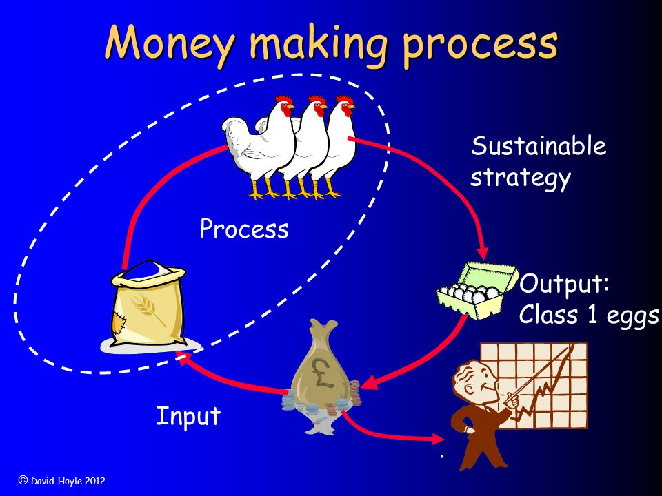  David Hoyle 2012 Money making process Process Input Output Output: Class 1 eggs Sustainable strategy