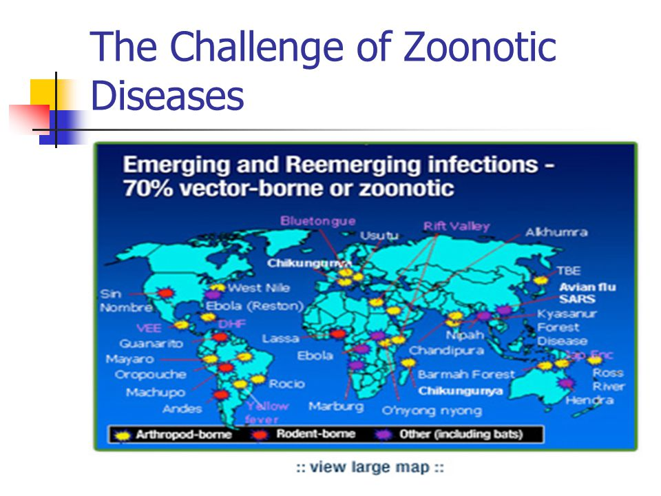 The Challenge of Zoonotic Diseases